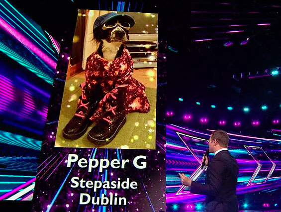 08-lives-week-02-review-pepper-g